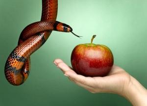 Pecado - Maçã - Cobra Coral